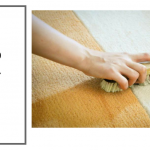 How to clean carpet by hand – 5 Simple Ways